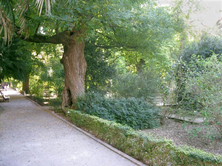 jardin-botanico-2